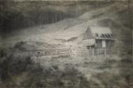 Abandonded farm shed, Taranaki, NZ. Image: Su Leslie, 2017