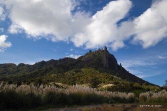 Mt Manaia, Northland, NZ. Image: Su Leslie 2019