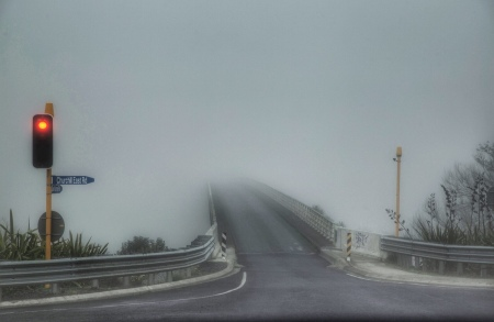 Trusting there is actually a bridge behind the mist. Driving to Field Days. Image: Su Leslie 2019