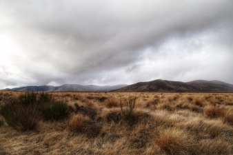 Rangipo Desert, North Island New Zealand. Image: Su Leslie 2019